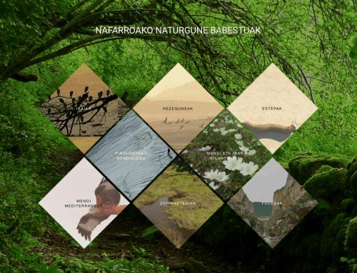 Nafarroako Naturgune Babestuak